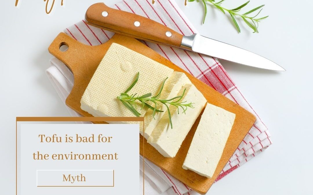 5 Common Myths About Tofu