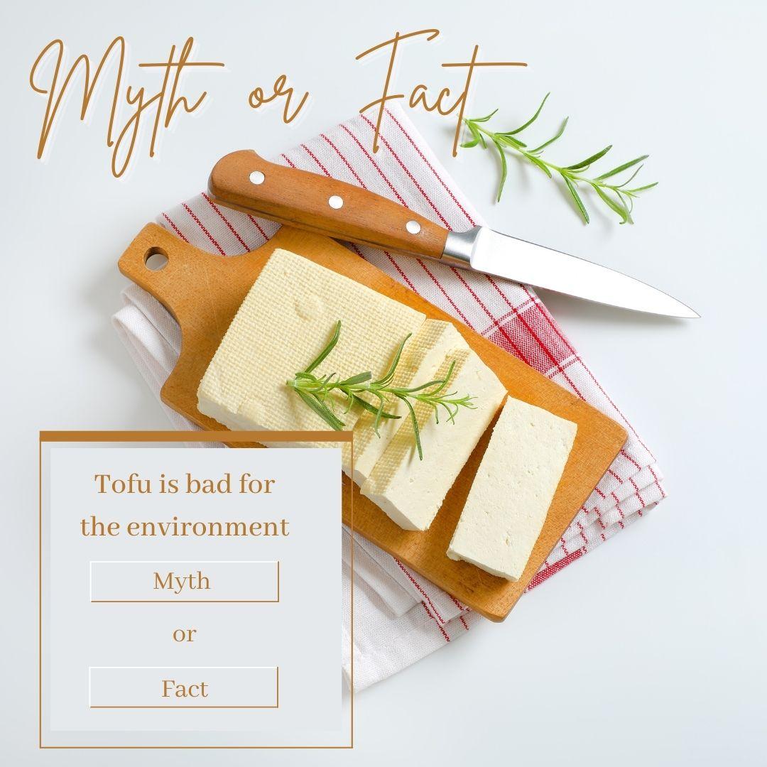 Myth or Fact: Tofu Blog