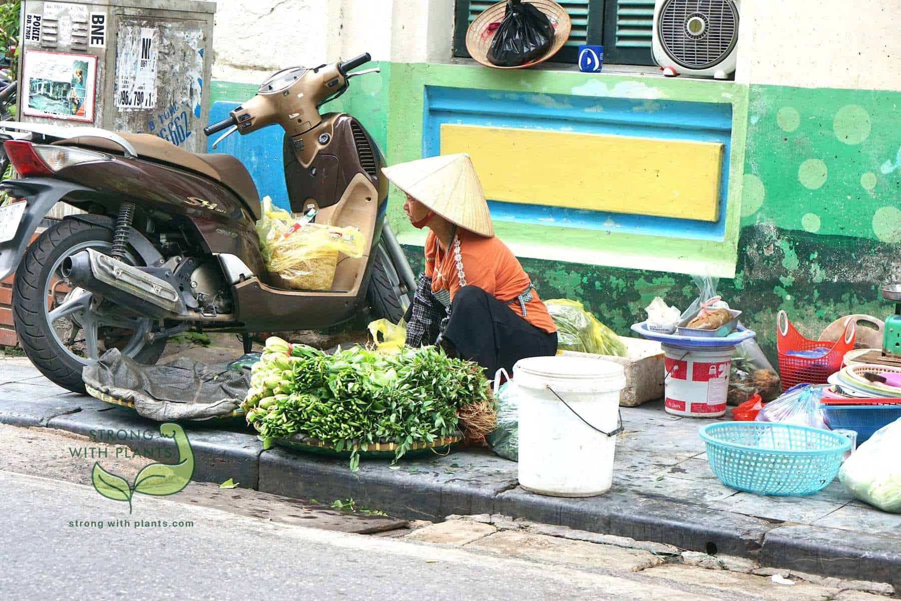 Vegan In Vietnam - Read This If You Are 100% Plant-Based