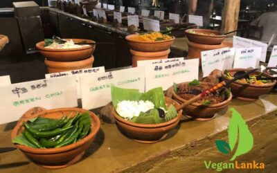 Nuga Gama – Spectacular Vegan Food You Must Try in Colombo