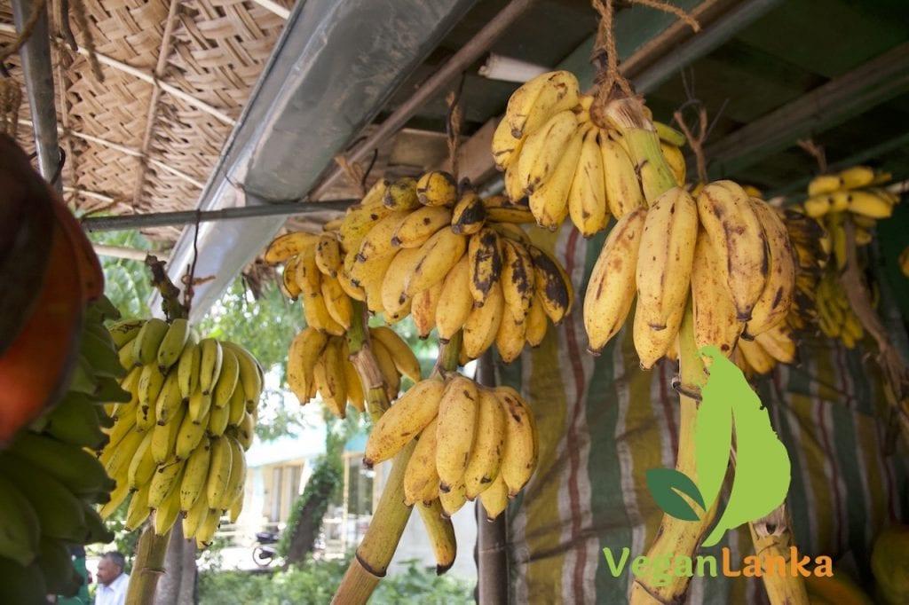 Different Types of Bananas of Sri Lanka