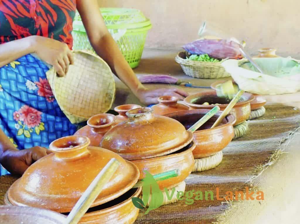 Habarana Village Tour - Vegan Food Options