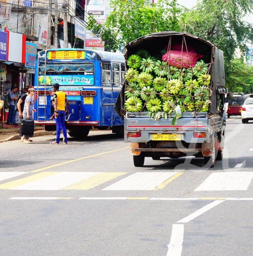 Bananas being transported in Sri Lanka