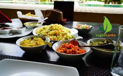 Ruwala Resort – Places to Stay with Vegan Options in Kalpitiya