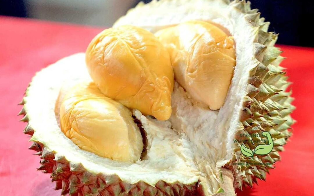 How to Avoid Bad Durian and Not to Be Scammed by a Durian Vendor