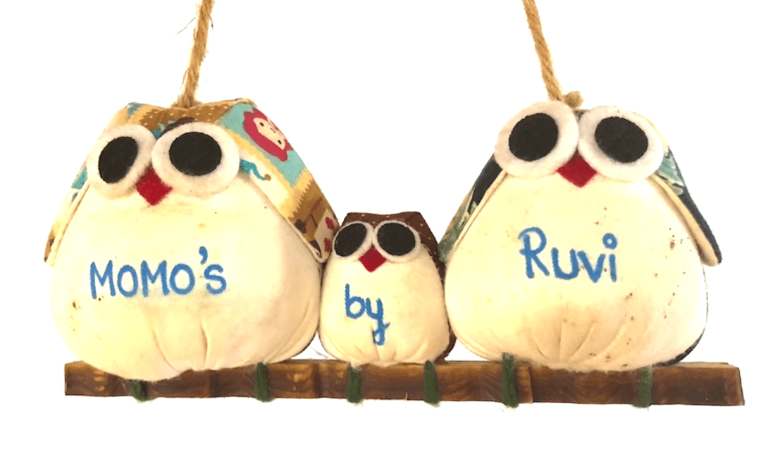 Momo's by Ruvi – Tibetan Vegan Dumplings in Colombo