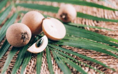 Sapodilla: A Fruit You Must Try In Sri Lanka