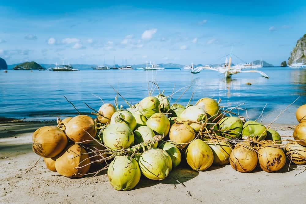 Fresh Coconut By The Beach