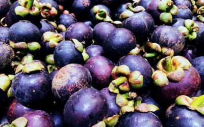Mangosteen – Exotic Fruits You Must Try
