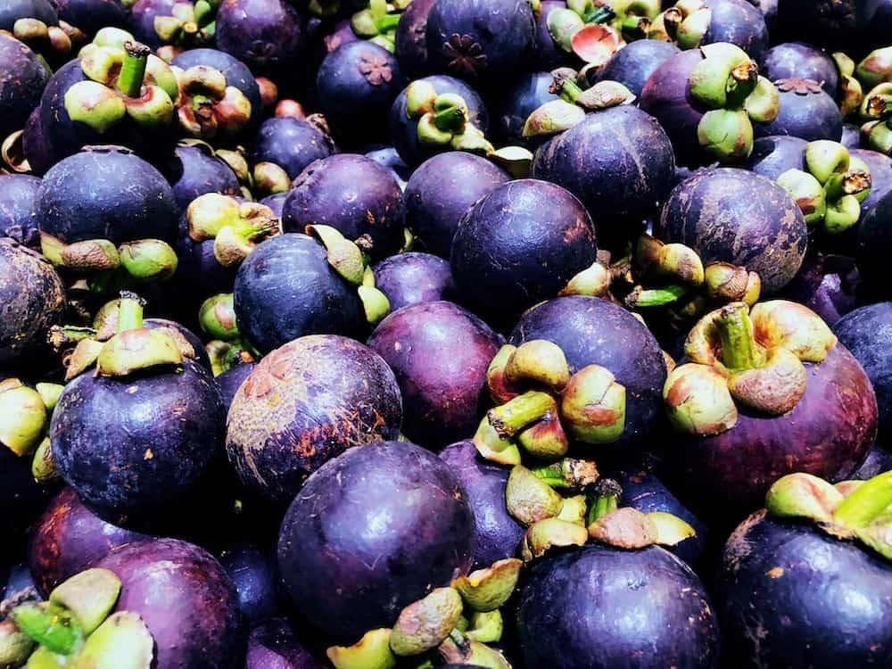 Mangosteen - Fruits In Sri Lanka