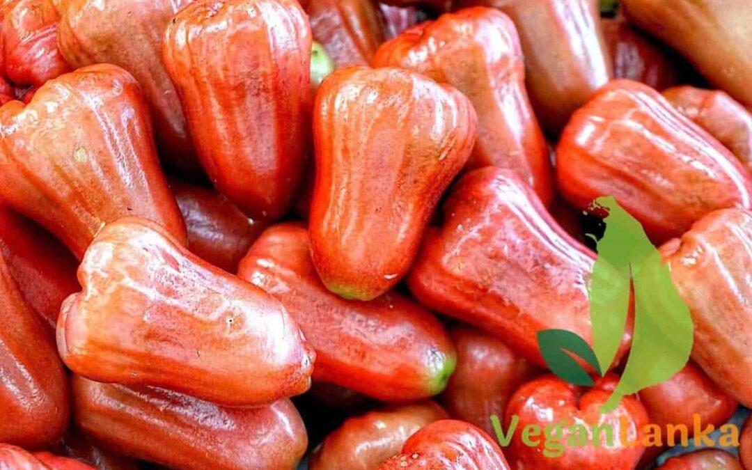 Rose Apples – Jambu (Water Apple / Bell Fruit) Sri Lankan Fruits